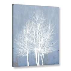ArtWall Scott Medwetz's Cadet Trees, Gallery Wrapped Canvas