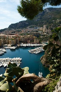 The Harbor in beautiful Monaco, in the French Riviera has the most amazing yatchs. I want to go back!