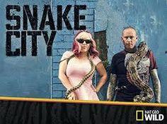 Image result for Snake City