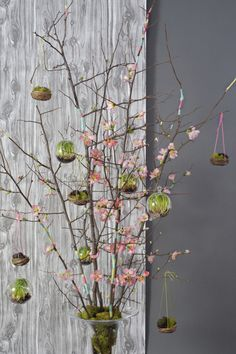 Easter Tree designed by Roanne Robbins photographed by Kelly Fitzsommons for