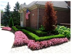 tiered hedge flowers florida - Google Search