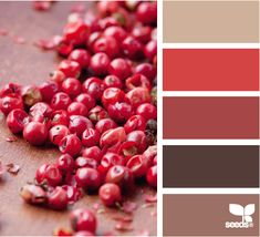 peppercorn reds Color Palette - Paint Inspiration- Paint Colors- Paint Palette- Color- Design Inspiration