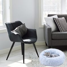 cat-bed-living-room 3d Interior Design, Interior Styling, Interior Decorating, Mid Century Modern Furniture, Contemporary Furniture, Home Office, Office Decor, Diy Zimmer, Living Room Flooring