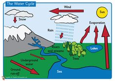 Water Cycle Poster - FREE plus other activities Ks2 Classroom, Classroom Projects, Classroom Displays, Science Classroom, School Projects, School Ideas, Classroom Rules, Science Lessons, Science Projects