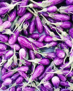 fairytales - eggplants | briarwinters | VSCO Grid