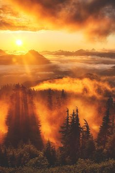 Sunset at Evergreen Mountain Lookout in Washington, USA, up above the clouds at 5,500 feet (by Michael Matti)