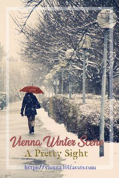 "Vienna Winter Scene, Still a Pretty Sight - ""Snow provokes responses that reach right back to childhood."" -Andy Goldsworthy"