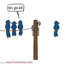 funny_cartoons-1.jpg (500×478)