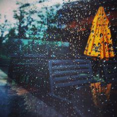 2014.6.3 빗방울 맺힌 유리