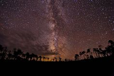 Seeing the Universe Above the Forest   © Michael Menefee.     Location between Baggs and Encampment Wyoming