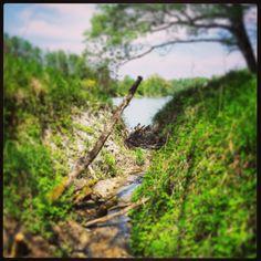 #inn #creek #river #bushcraft #outdoor