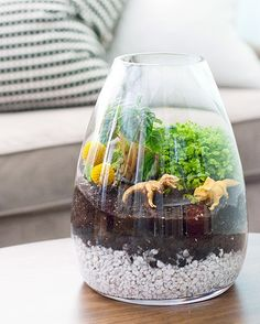 Dinosaur decoration and a Great project for kids. Fairmont Blog: ARTS & CRAFTS dinosaur terrarium