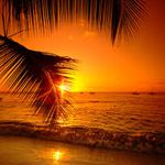 Barbados country information Barbados Country, Good Night Beautiful, Country Information, Bridgetown, Beach Wallpaper, Evening Sky, Travelling Tips, Beach Holiday, Natural Wonders