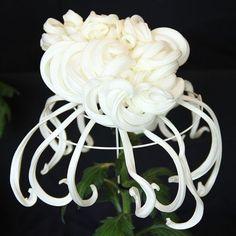 The art of the Japanese Chrysanthemum by VIKTORIA MINSK
