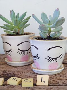 Petits pots de fleurs