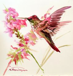 Flying Hummingbird painting, 11 X 11 in, original watercolor, violet purple hummingbird lvoer art, brids and flowers