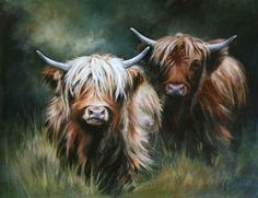 Barkers Highland beef from Mid Torrie Farm,Callander,Mid Torrie Farm self-catering holiday cottage near Callander,Highland Cattle Art by Hilary Barker Highland Cow Painting, Highland Cow Art, Scottish Highland Cow, Highland Cattle, Fluffy Cows, Baby Cows, Baby Elephants, Cute Cows, Farm Animals