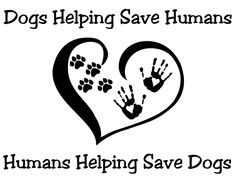 """Honor or in Memory The efforts support the ongoing cancer research in human helping raise the quality of life for pets-humans """"Dogs helping save Humans-Humans helping save Dogs"""". Submit a photo."""