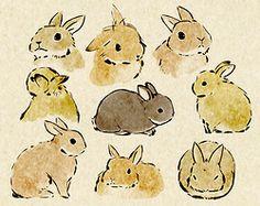 sweet illustrated cute bunnies