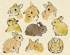 sweet illustrated cute bunnies