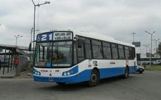 Linea 21 Transporte Teniente General Roca S.A. ( D.O.T.A. ) Interno 2109 Todo Bus Pompeya II Agrale MT17