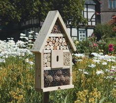 El blog de Los Peñotes: ¿Hotel de insectos?