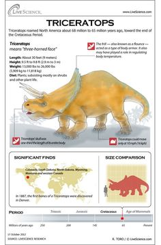 Learn about the horns, bones, habitat and other secrets of Triceratops.