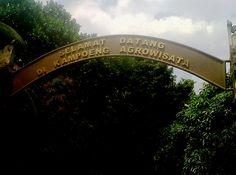 Kampung Agrowisata RW 06 Pesanggrahan, tempat wisata baru di Jakarta | liburan-aja.com