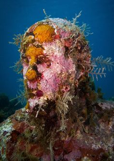 The Silent Evolution - Underwater Sculpture by Jason deCaires Taylor