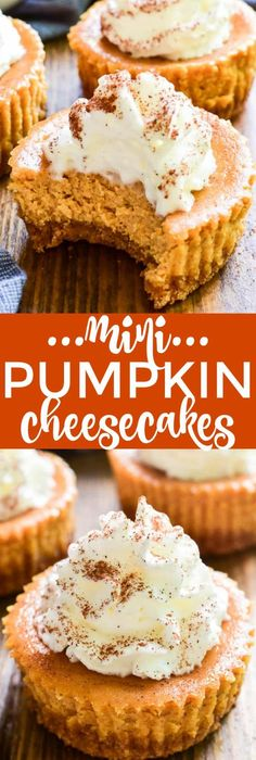 Mini Pumpkin Cheesecakes are the perfectdessert for any fall celebration! They combine all the flavors of pumpkin pie in a delicious bite-sized treat. These cheesecakes start with a sweet graham cracker crust and are filled with pumpkin cheesecake, whip Mini Desserts, Dessert Recipes, Vegan Desserts, Irish Desserts, Jelly Desserts, Blueberry Desserts, Small Desserts, Holiday Desserts, Easter Recipes