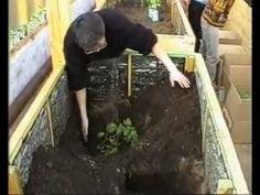 Выращивание в коробах - овощи, картошка - YouTube