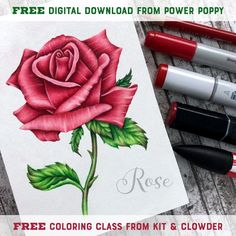 Kit and Clowder Online Coloring Classes for Markers, Copic, Pencils Online Coloring, Free Coloring, Colouring, Copics, Prismacolor, Single Rose, Alcohol Markers, Polychromos, Color Blending