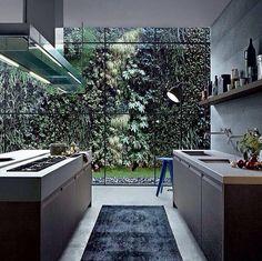 Open living kitchen. Green wall.