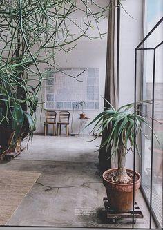 green plants interior industrial natural tropical elle decoration