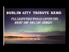 I'll Leave This World Loving You Dublin City Tribute Band