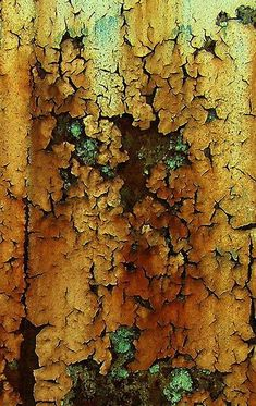 patina - rust - peeling paint - beautiful decay ~ LOVE This Look . Patterns In Nature, Textures Patterns, Art Patterns, Foto Macro, Peeling Paint, Beautiful Textures, Mellow Yellow, Natural Texture, Natural Colors