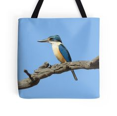 Sacred Kingfisher by BirdBags Small