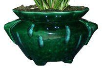 """Waterfall Green and Blue Ruffle Shaped Self Watering Planter, 7.75"""" Diameter Opening by TVP Pottery. $24.95. Opening for plant is 7.5"""" in diameter. Keep moisture loving plants alive and thriving with minimal attention year round--perfect for homes and offices.. The outer pot holds enough water to keep a plant alive for one to three weeks--long enough to keep your plantshealthy while you are out of town on business or vacation.. Outer pot is fully glazed inside and out to pr..."""