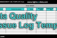 Data Quality Issue Log
