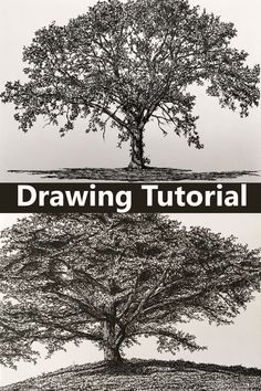 How to Draw with Pens and Pencils Beginners guide for realistic pencil drawing and how to draw with a pen. Sketching techniques and how to draw realistic trees. Pest pens and pencil tutorial. Tree Pencil Sketch, Tree Drawings Pencil, Pencil Trees, Realistic Pencil Drawings, Tree Sketches, Drawing Sketches, Drawing Guide, Trees Drawing Tutorial, Landscape Drawing Tutorial