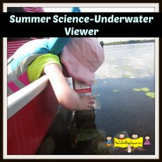 Whether you're exploring from the banks of a creek, the beach or a boat, this DIY underwater viewer is a great way to catch a glimpse of the wildlife in your area!
