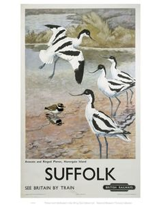 #Suffolk #Avocets #Vintage #Rail #Railway #Train #Poster #Posters #Prints #Print #Art #UK #Britain #British #Old #Travel #Suffolk www.vintagerailposters.co.uk