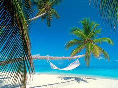 Picturing that tropical getaway is a great way to #save up some serious #cash. #money