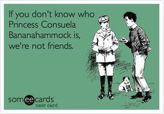 Princess Consuela Bananahammock = Phoebe Buffay but her friends will call her Valerie.