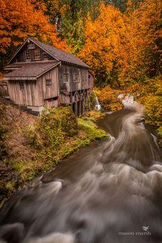 Cedar Creek Grist Mill in Southwest Washington State, 2012. Photo by Mason Marsh.