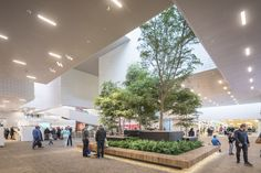 Image 44 of 49 from gallery of BIG's LEGO House Photographed by Laurian Ghinitoiu. Photograph by Laurian Ghinitoiu Concept Architecture, Landscape Architecture, Landscape Design, Architecture Design, Atrium Design, Lobby Design, Shop Interiors, Office Interiors, Accor Hotel