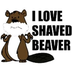 Shaved beaver t shirts