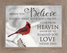 When You Believe Cardinal Personalized – Summer Snow Art Faith Quotes, Life Quotes, Qoutes, Worry Quotes, Strength Quotes, Sex Quotes, Wisdom Quotes, Signs From Heaven, See You Later Alligator