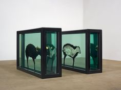 The Black Sheep with Golden Horns 2009 Damien Hirst