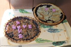 Blueberry Pie Making with the Family